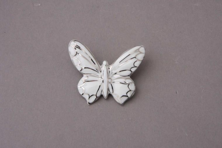 Medallion (butterfly)