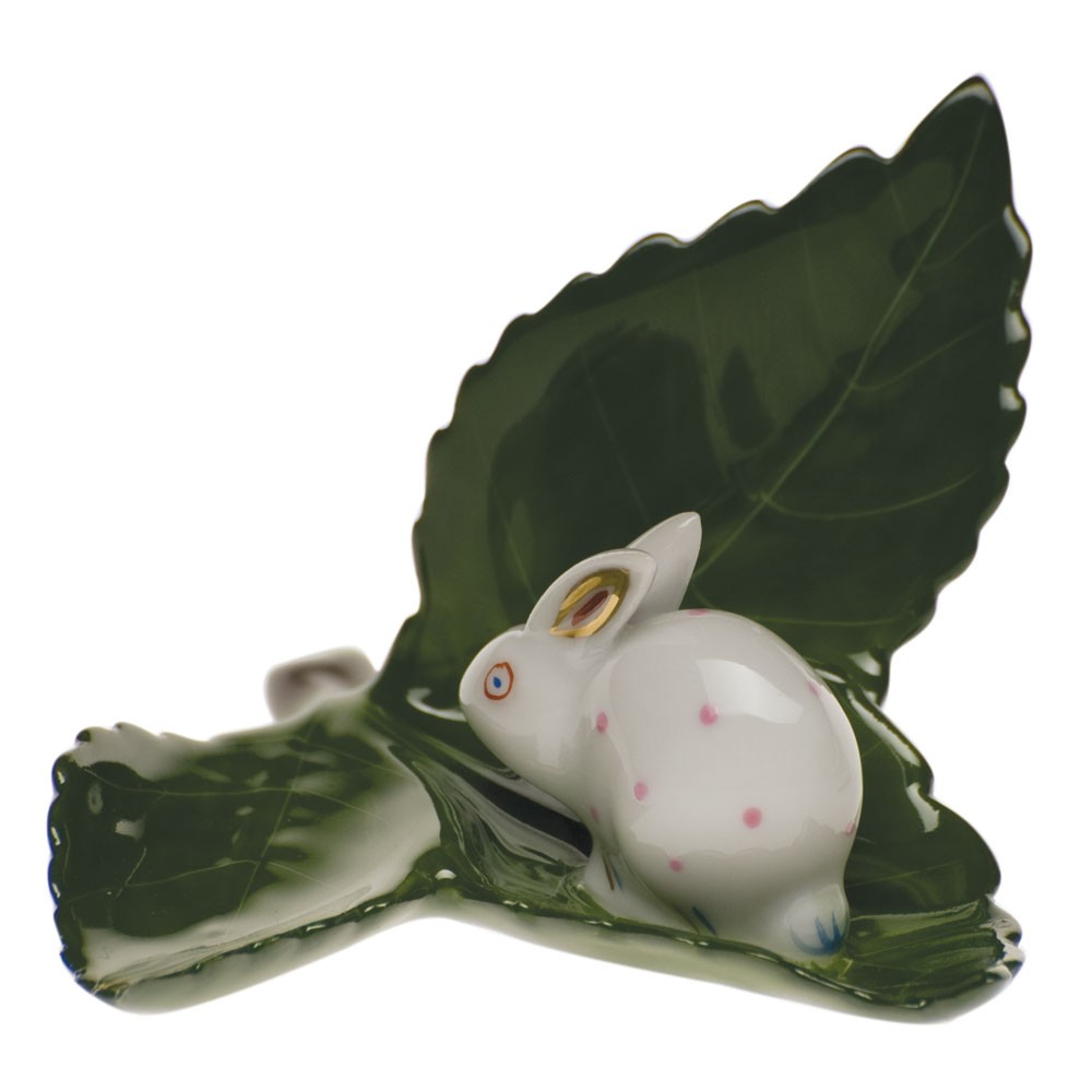 Rabbit on a leaf