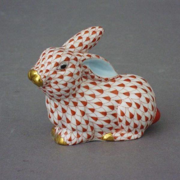 Bunny lying