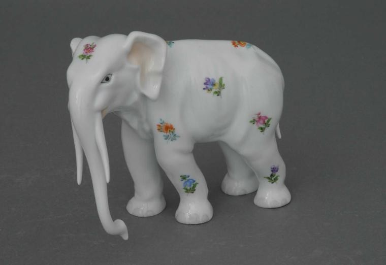 Elephant, Colonel Hathi