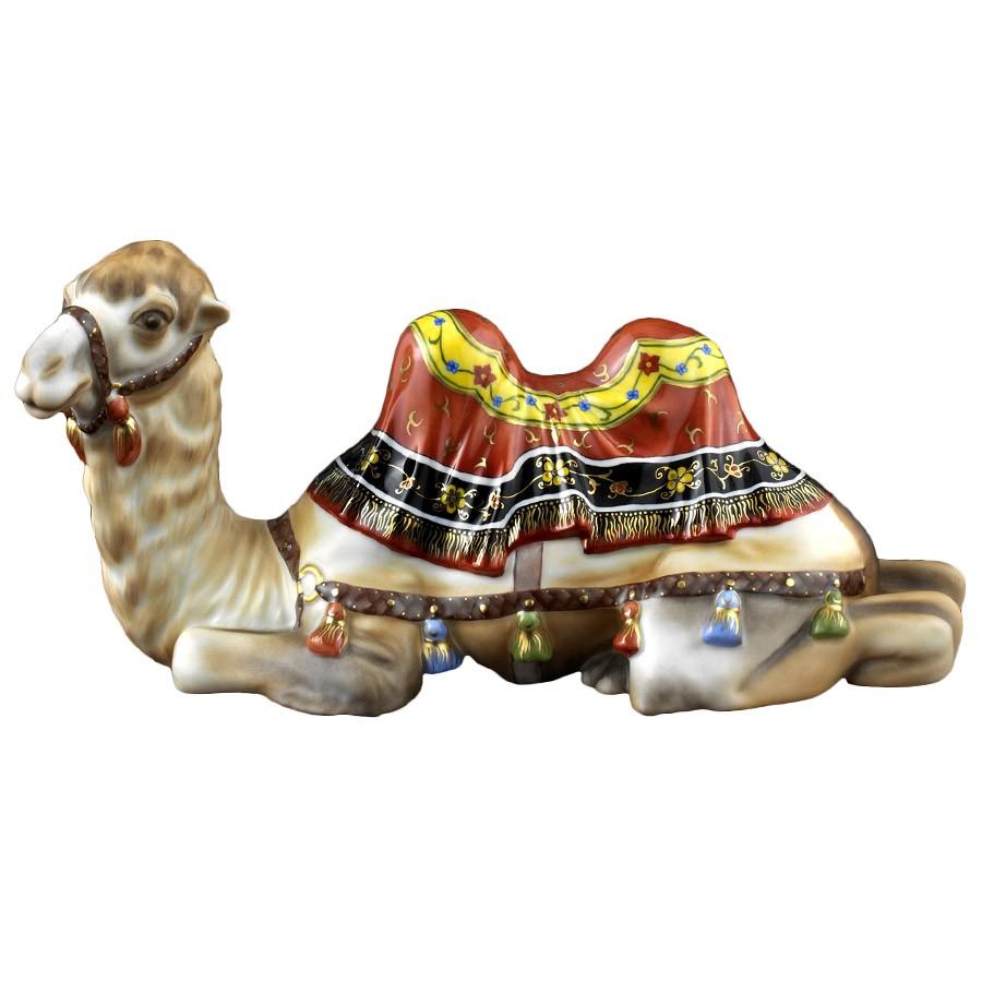 Camel, lying