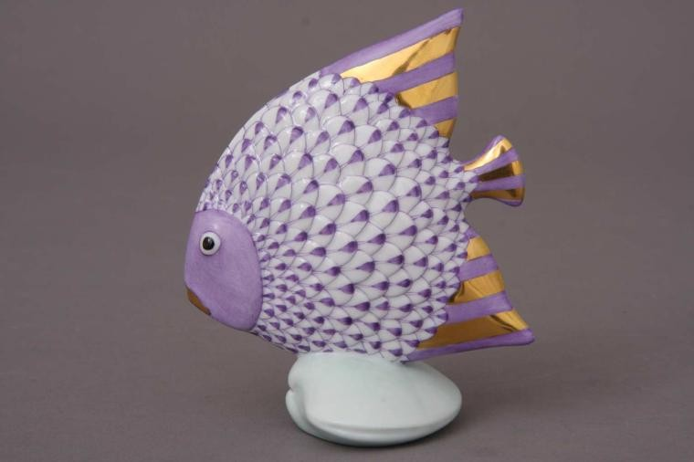 Fish on a Shell