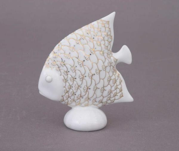 Fish on a Sea-egg
