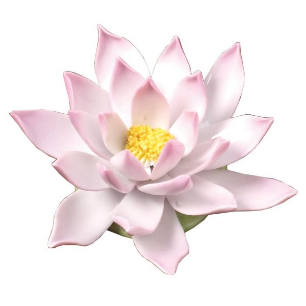 Water Lily, Medium - Natural