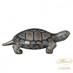 Turtle - Fishnet Platinum