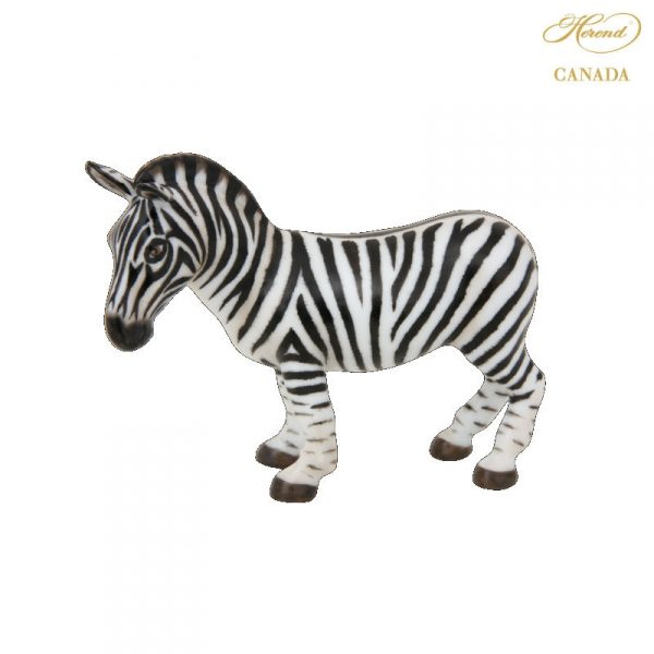Zebra - Matt Natural