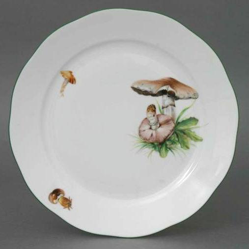 Mushroom of Forest - Salad Plate