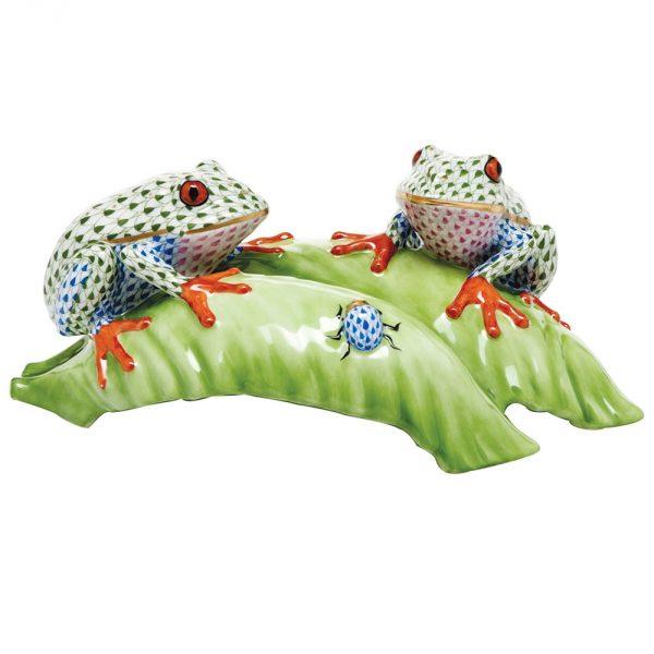 Tree frogs on leaf