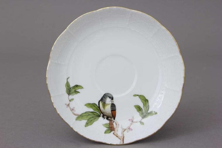 Coffee Cup and Saucer - Rothschild Bird