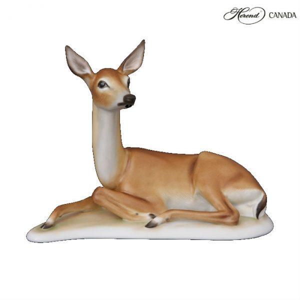 Deer, lying