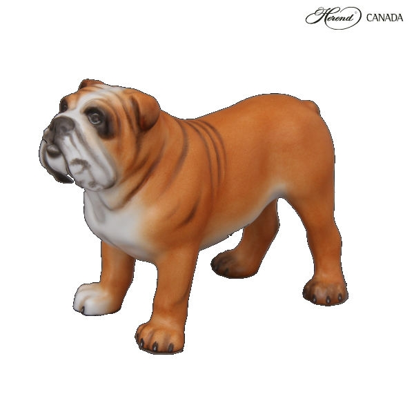 Herend Animal Figurine Bulldog MCD Matt Natural Hand Painted