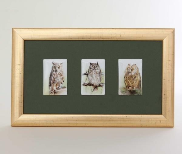 Framed Picture - 3 OWLS