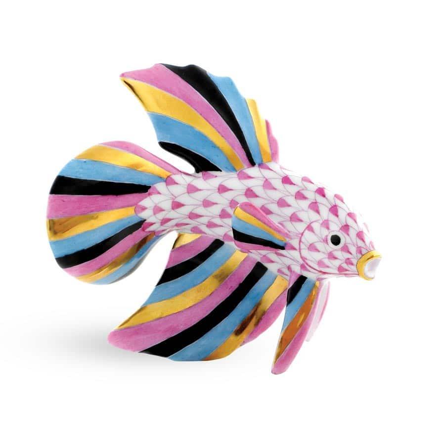 betta+fish+raspberry